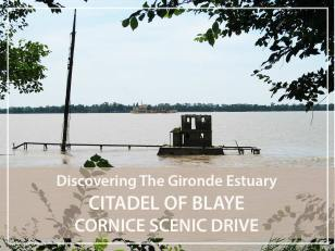 Half day guided tour : Citadel of Blaye and the Gironde cornice